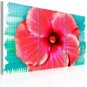 Foto schilderij - Hawaiian flower - triptych