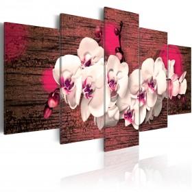 Foto schilderij - Blijdschap en orchidee
