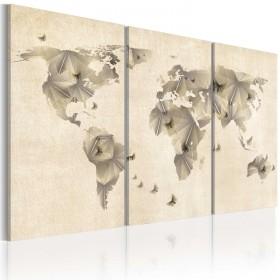Foto schilderij - Atlas van vlinders - triptiek