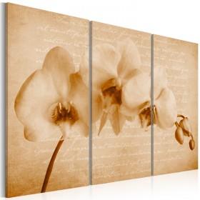 Foto schilderij - orchidee (vintage)