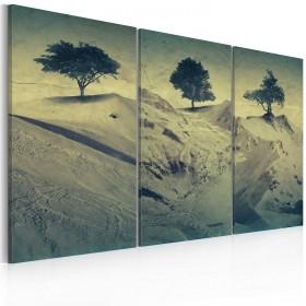 Foto schilderij - Quicksands