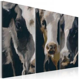 Foto schilderij - Piebald cow