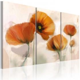 Foto schilderij - Artistic poppies - triptych
