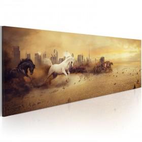 Foto schilderij - City of stallions