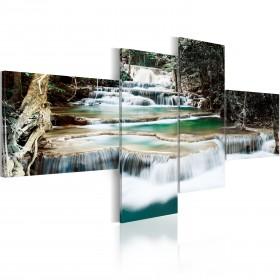 Foto schilderij - Forest cascade