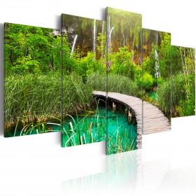 Foto schilderij - Emerald Trail