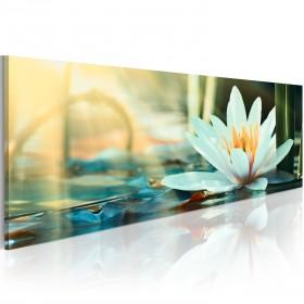 Foto schilderij - The Lake of Lotus
