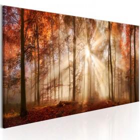 Foto schilderij - Autumnal Dawn