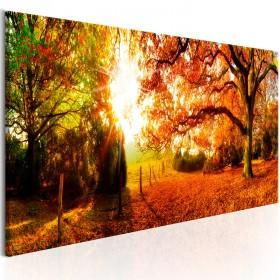Foto schilderij - Magic of Autumn
