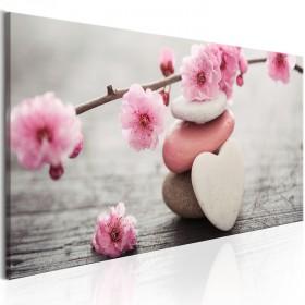 Foto schilderij - Zen: Cherry Blossoms