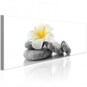 Foto schilderij - White Lotus