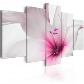 Foto schilderij - Amarylis: Pink Charm