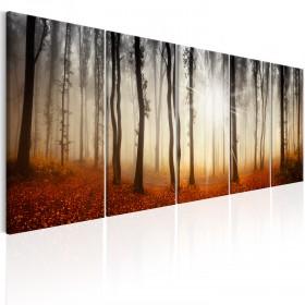 Foto schilderij - Morning Fog