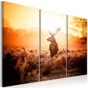 Foto schilderij - Deer in the Sun I