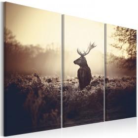 Foto schilderij - Lurking Deer I