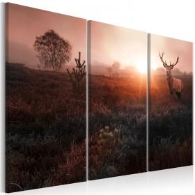 Foto schilderij - Deer in the Sunshine I