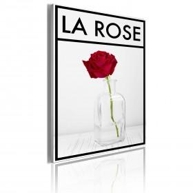 Foto schilderij - La rose