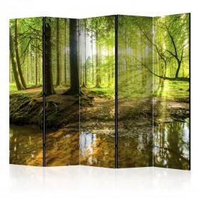 Kamerscherm - Forest Lake II