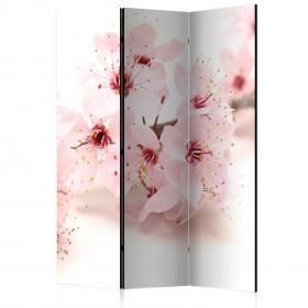 Kamerscherm - Cherry Blossom