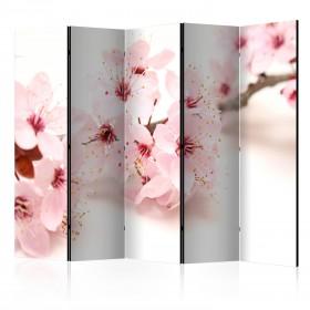 Kamerscherm -  Cherry Blossom II