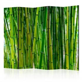 Kamerscherm - Bamboo Forest II