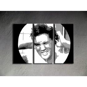Popart schilderij ELvis Presley 2