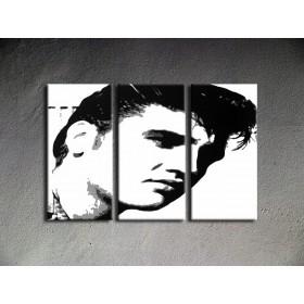 Popart schilderij Elvis Presley 1