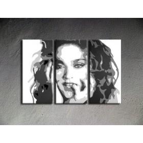 Popart schilderij Madonna 1