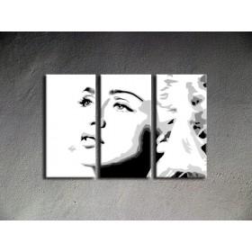 Popart schilderij Madonna 2