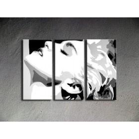 Popart schilderij Madonna 3